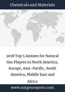 2018 Top 5 Amines for Natural Gas Players in North America, Europe, Asia-Pacific, South America, Middle East and Africa