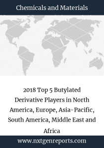 2018 Top 5 Butylated Derivative Players in North America, Europe, Asia-Pacific, South America, Middle East and Africa