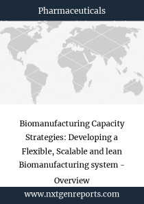 Biomanufacturing Capacity Strategies: Developing a Flexible, Scalable and lean Biomanufacturing system - Overview